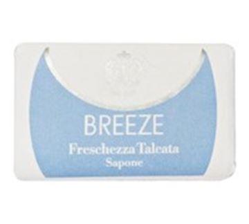 breeze sapone gr-100 fresch talco