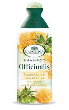 angelica shampo nutriente olio oliva-250