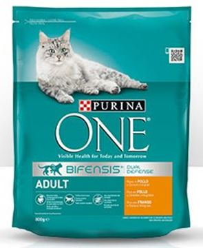 purina-one-gatto-croc-pollo-cereali-gr--800
