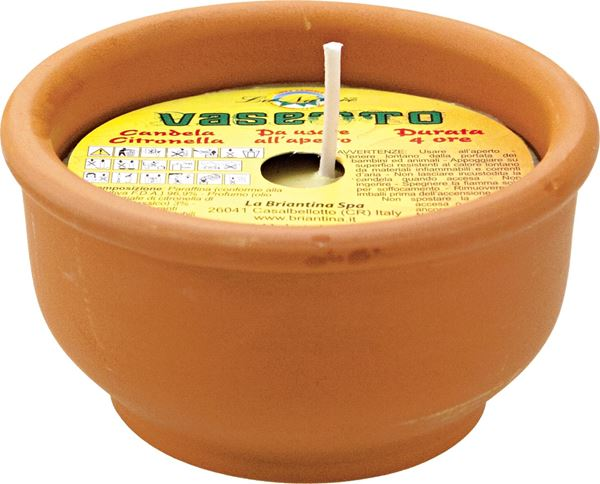 citronella-terrac-vaso-4h--3256