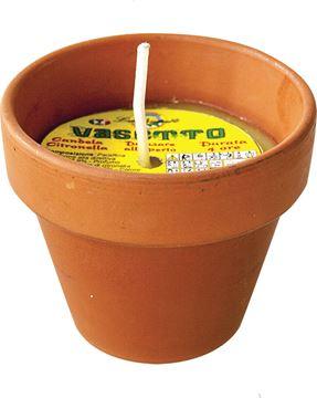 citronella-vaso-terrac-mini-3611