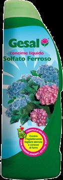 gesal-concime-solfato-ferroso-ml-1000