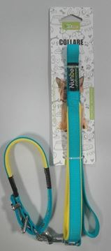Picture of DOG COLLAR + LEASH 1,5 CM *120 CM 30-50 CM