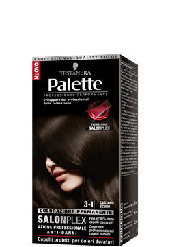 Picture of PALETTE HAIR COLOR 3-1 DARK BROWN