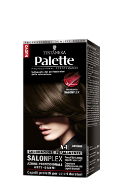 Picture of PALETTE HAIR COLOR 4-1 CHESTNUT
