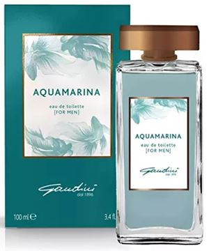 Picture of @ GANDINI AQUAMARINA EDT 100 SPR UOMO