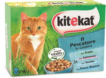 Picture of KITEKAT MULTIPAK X 12 PESCATORE  GR.100