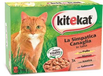 Picture of KITEKAT MULTIPAK X 12 SIMPATICHE CANAGLIE.-100
