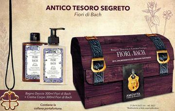 Picture of AMOVITA BAULETTO FIORI BACH BAGNO 300+CREMA CORPO 300