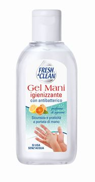 Picture of FRESH & CLEAN GEL MANI IGIENIZZANTE CON ANTIBATTERICO ML 100