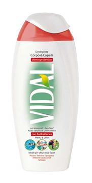 Picture of VIDAL ANTIBACTERICAL SHOWER GEL 250 ML