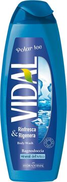 Picture of VIDAL POLAR ICE BODY WASH 500 ML