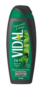 Picture of VIDAL PEPPERMYNTH & GINKGO SHOWER GEL 250 ML