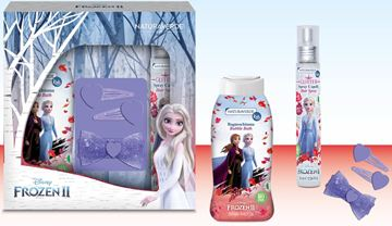 Picture of DISNEY FROZEN II BAGNO 250+GLITTER75+SET CAPELLI 2198
